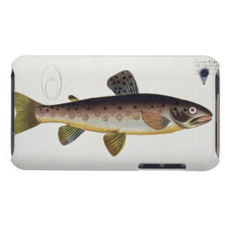 Brown Trout (Salmo Iasustris) plate XXIII from 'Ic iPod Touch Cover