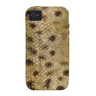 Brown Trout Scales Vibe iPhone 4 Cover