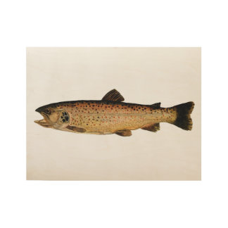 Brown Trout Wood Poster
