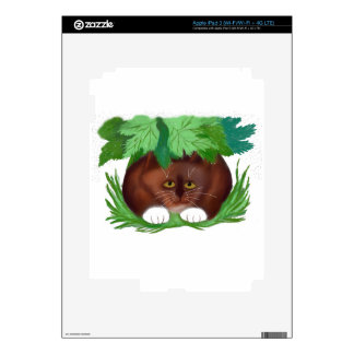 Brown Tuxedo Cat Shelters under Maple Leaves When iPad 3 Decals