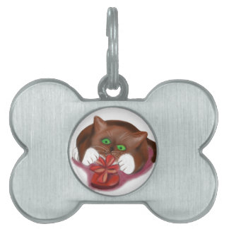 Brown Tuxedo Kitten Attacks Heart Box of Chocolate Pet ID Tags