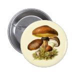 Brown Vintage Mushroom Button