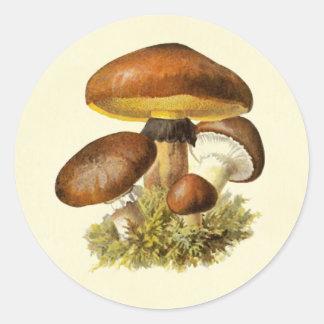 Brown Vintage Mushroom Classic Round Sticker