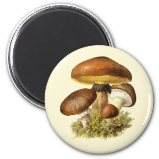 Brown Vintage Mushroom 2 Inch Round Magnet