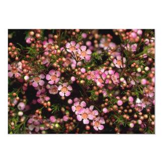 "Brown Wax flower flowers 5"" X 7"" Invitation Card"