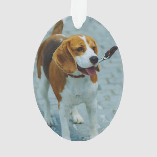 Brown white dog ornament