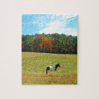 Brown White horse autumn trees blue sky Puzzle