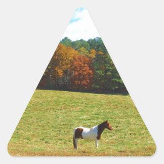 Brown & White horse,autumn trees,blue sky Triangle Sticker