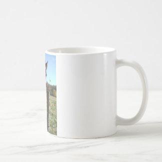 Brown & White horse w/ wildflower Coffee Mug