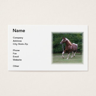 Brown & White Paint Horse Business Card