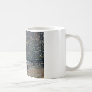 Brown &White Painted Horse and Cream Horse Coffee Mug