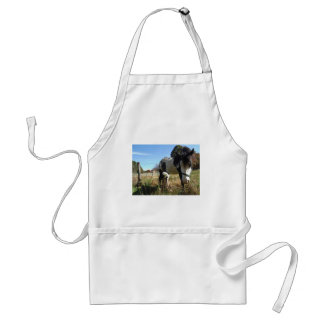Brown &White, Painted Horse, Queen Ann Lace flower Adult Apron