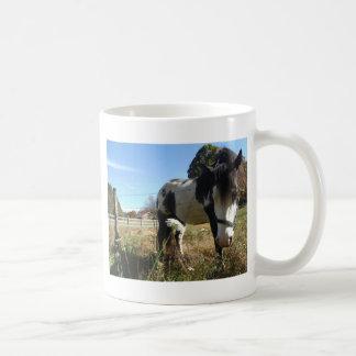 Brown &White, Painted Horse, Queen Ann Lace flower Coffee Mug