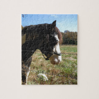 Brown White Painted Horse Queen Ann Lace flower Puzzle