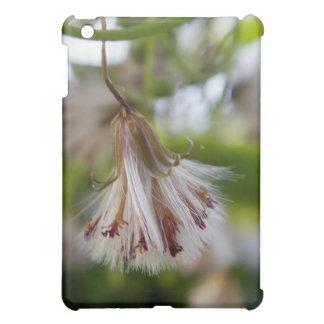 Brown & White Seedpod iPad Mini Case