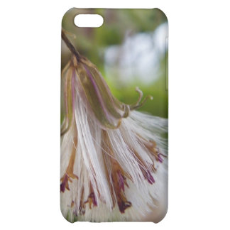 Brown & White Seedpod iPhone 5C Cover