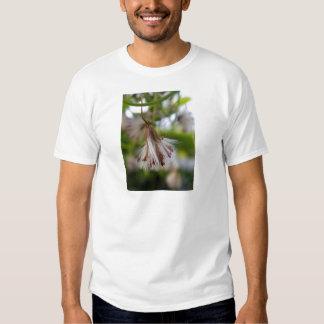 Brown & White Seedpod T-shirt
