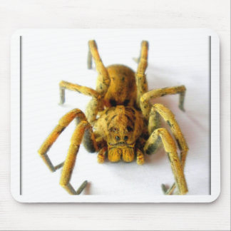 Brown Widow 2 Mouse Pads