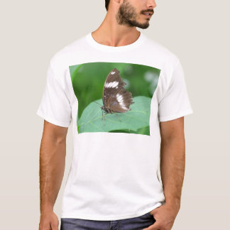 Brown with With White Flashes Butterfly T-Shirt