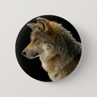Brown wolf - head wolf - wild animal pinback button