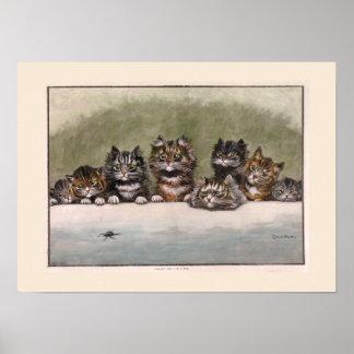 Brown y gatitos grises del Tabby Poster
