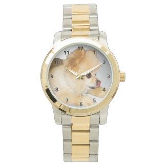 Brown y perro blanco de Pomeranian Reloj De Mano