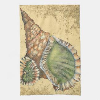 Brown y Seashell verde Toallas De Mano