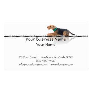 Brown y Terrier galés negro que ponen en zigzag Tarjetas Personales