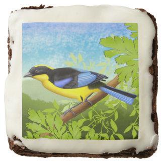 Brownie cons alas azul del gastrónomo del pájaro