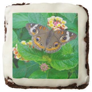 Brownie de la foto de la mariposa