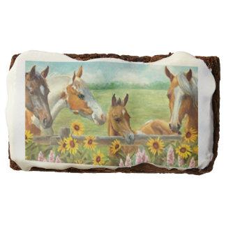 Brownie de la pintura del caballo