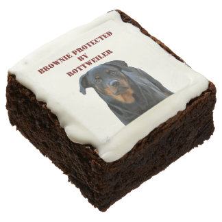 Brownie Protected by Rottweiler