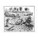 Brownies Fighting Alligators Postcard