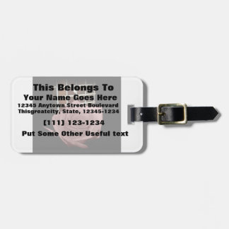 Brownish pink single rose against fretboard luggage tags