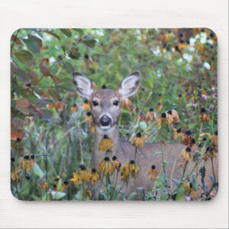 Browsing Deer After the Gardens Freeze Mouse Pad