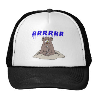 Brrrrr Trucker Hat