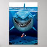 Bruce, Nemo y Dory 2 Poster