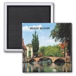 BRUGGE, BELGIUM FRIDGE MAGNET