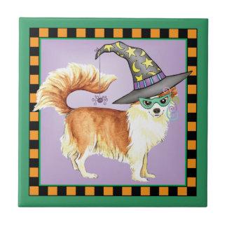Bruja de la chihuahua azulejo cuadrado pequeño