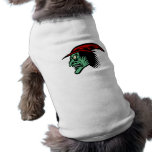 Bruja enojada ropa de mascota