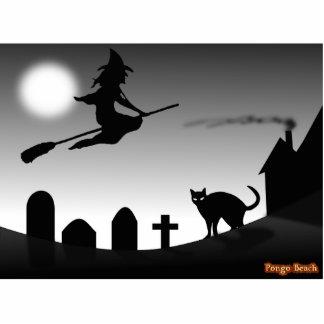 Bruja y gato negro en la noche escultura fotográfica
