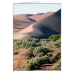 Bruneau Dunes Point Greeting Card
