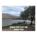 Bruneau Dunes State Park Postcard