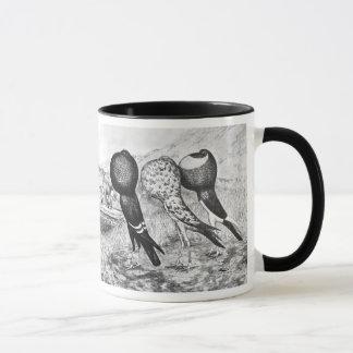 Brunner Pouter Pigeons Mug