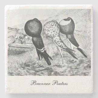 Brunner Pouter Pigeons Stone Coaster