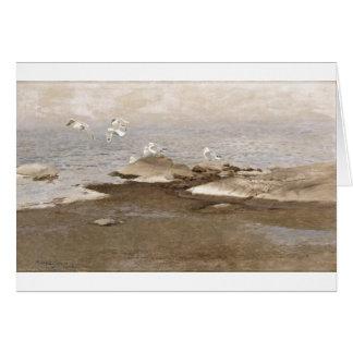 Bruno Liljefors - gaviota 1909 del mar de la playa Tarjeta De Felicitación