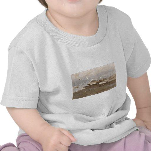 Bruno Liljefors - Gulls @ Beach 1909 Sea Seagull Tee Shirt