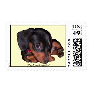 Bruno's Own Postage