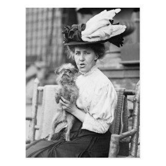 Bruselas Griffon, 1900s tempranos Tarjetas Postales