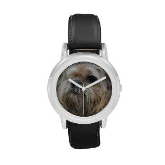 Bruselas Griffon Reloj